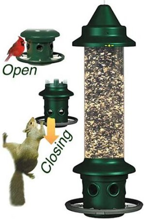 Squirrel Proof Bird Feeders Homemade